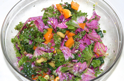 raw deco red curly cabbage salad with Nama Shoyu