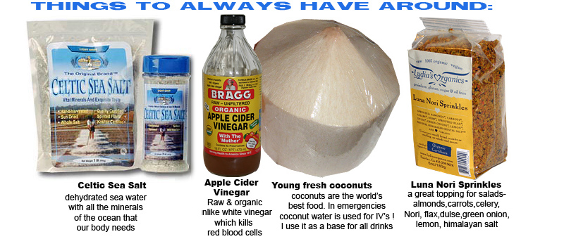 Things to have around, celtic sea salt, nama shoyu, apple cider vinegar,fresh young whote coconuts and Luna Nori sprinkles